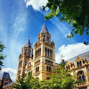 natural history museum: top london museums