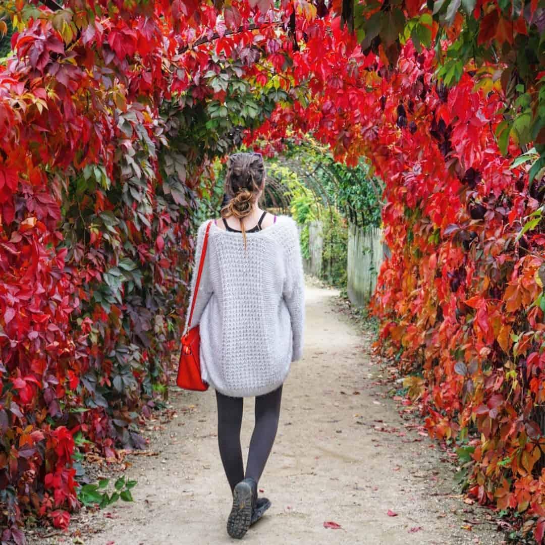 versailles autumn