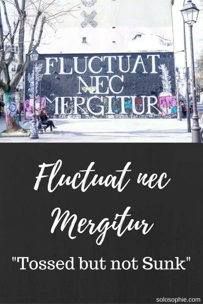 meaning of fluctuat nec mergitur