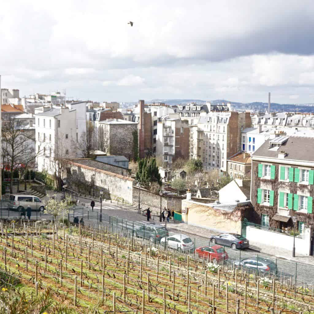 secret vineyards of paris close montmartre