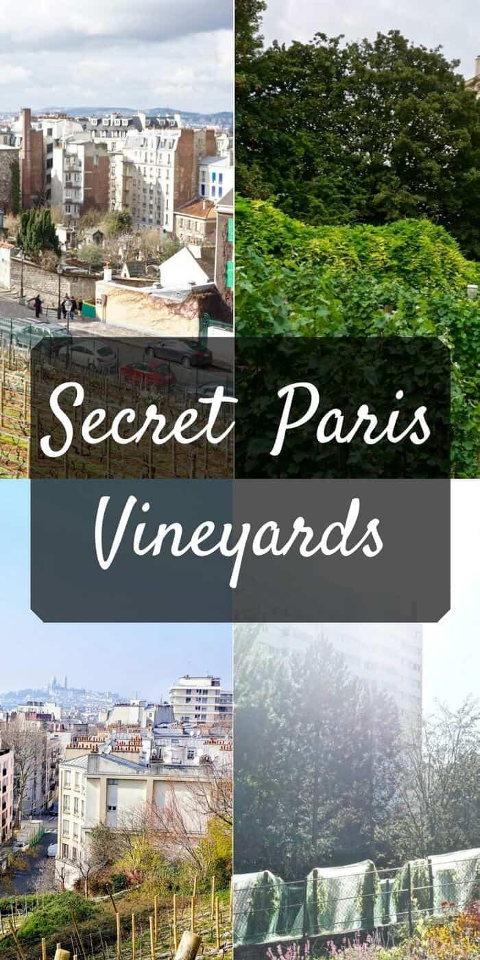 secret paris vineyards