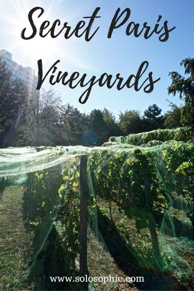 hidden paris vineyards