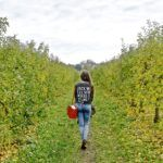 FRENCH FRUIT PICKING IN VERSAILLES: A QUIRKY DAY TRIP FROM PARIS