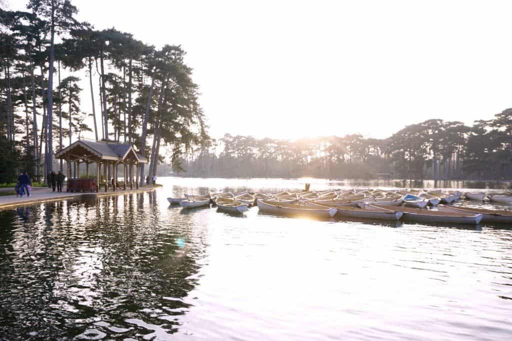 renting a boat in bois de boulogne