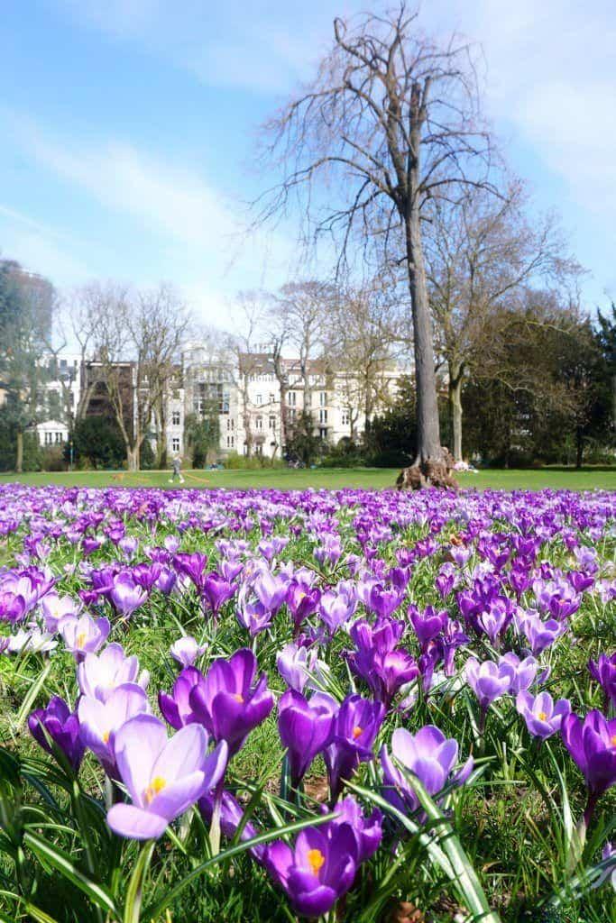 park dusseldorf germany