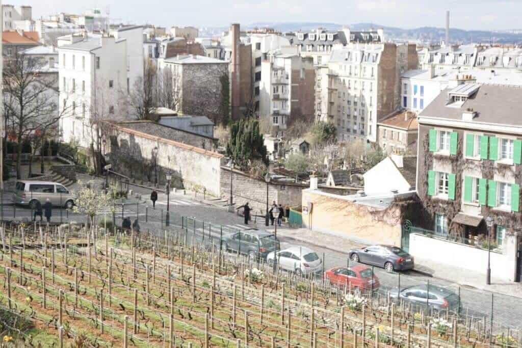 Montmartre Walking Tour: Clos Montmartre