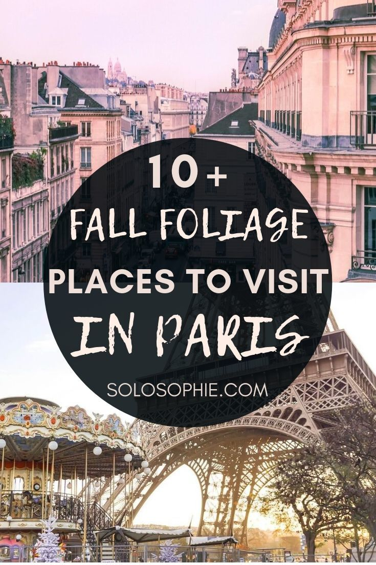 Here's where you can REALLY see the fall foliage in Paris! Top Paris photo locations and Instagrammable Paris destinations in the autumn!