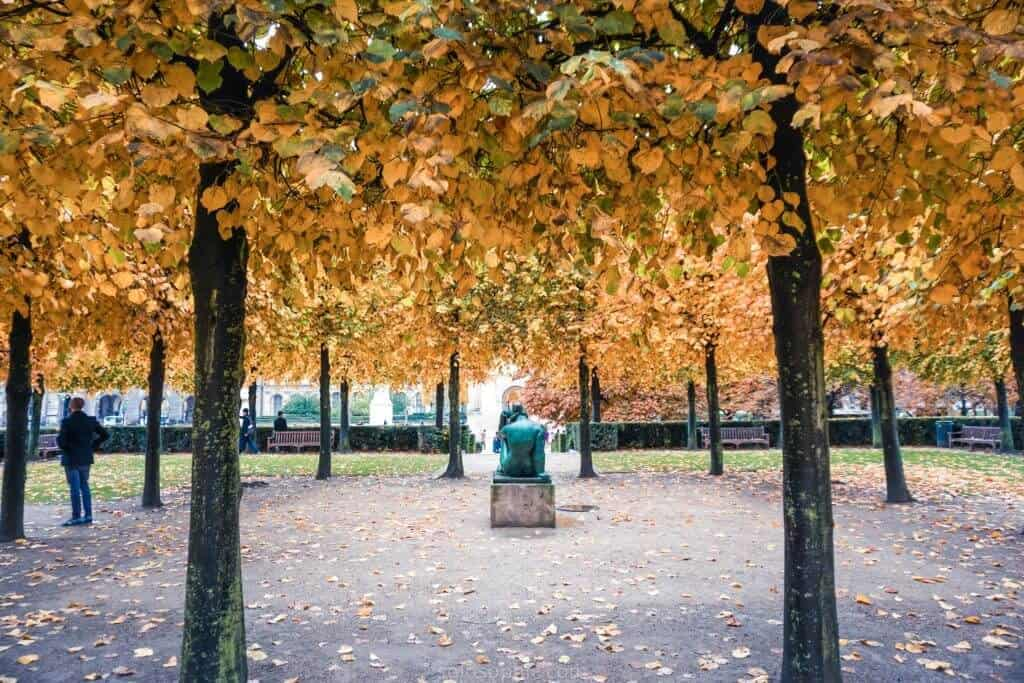 where to see the best fall foliage in paris, france: jardin des tuileries