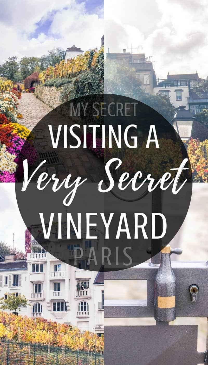 My secret Paris locations: visiting Clos Montmartre, a hidden and secret vineyard in the heart of Montmartre, 18e arrondissement, Paris.