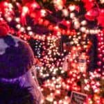 Where to see and find the very best Christmas lights in paris, France