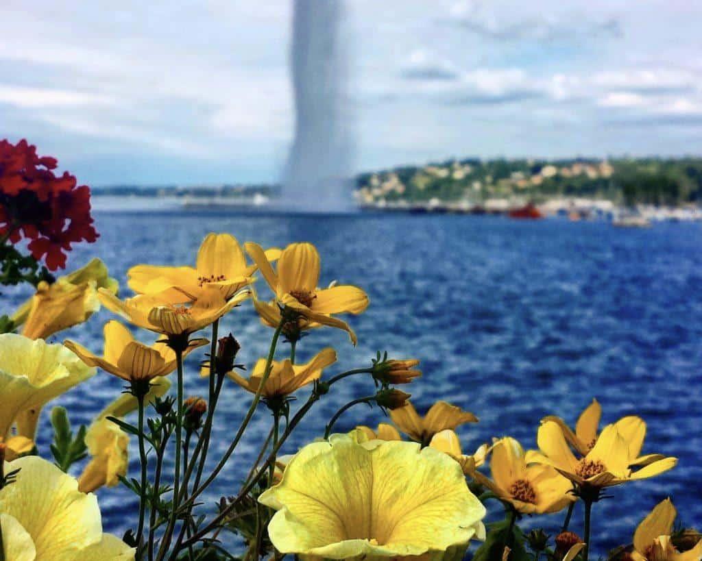 Most beautiful places in Switzerland: Geneva