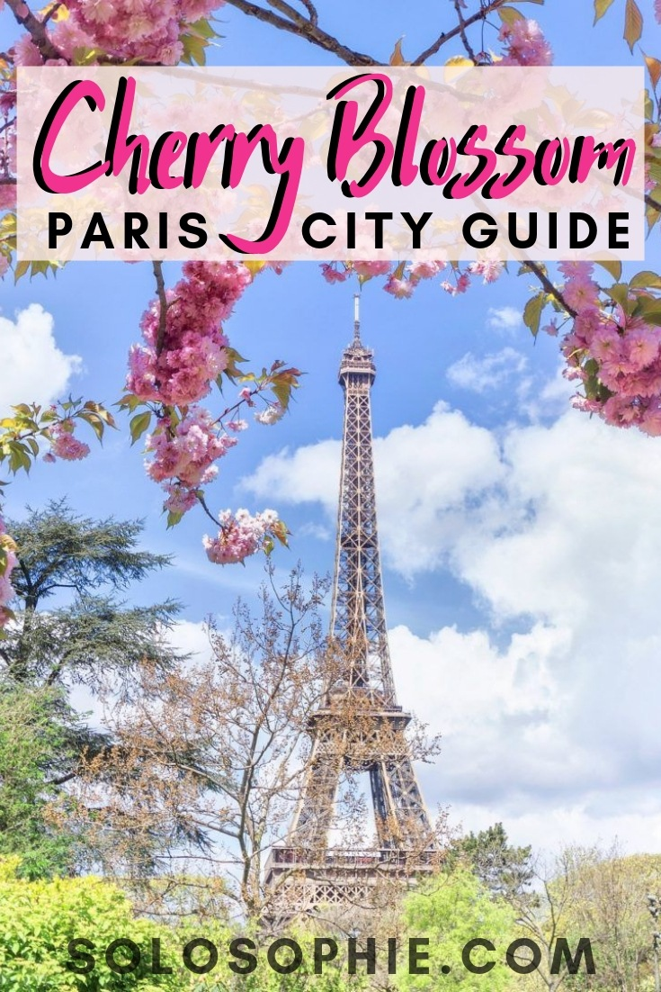 Where to find cherry blossom in Paris. Locations, tips, and practical advice for the cherry blossom season in the French capital of Paris, France. Spring flowers/ blooms/ floral spots.