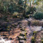 Murchington, a quaint hamlet in Dartmoor National park, Devon, England: throwleigh footpath over water
