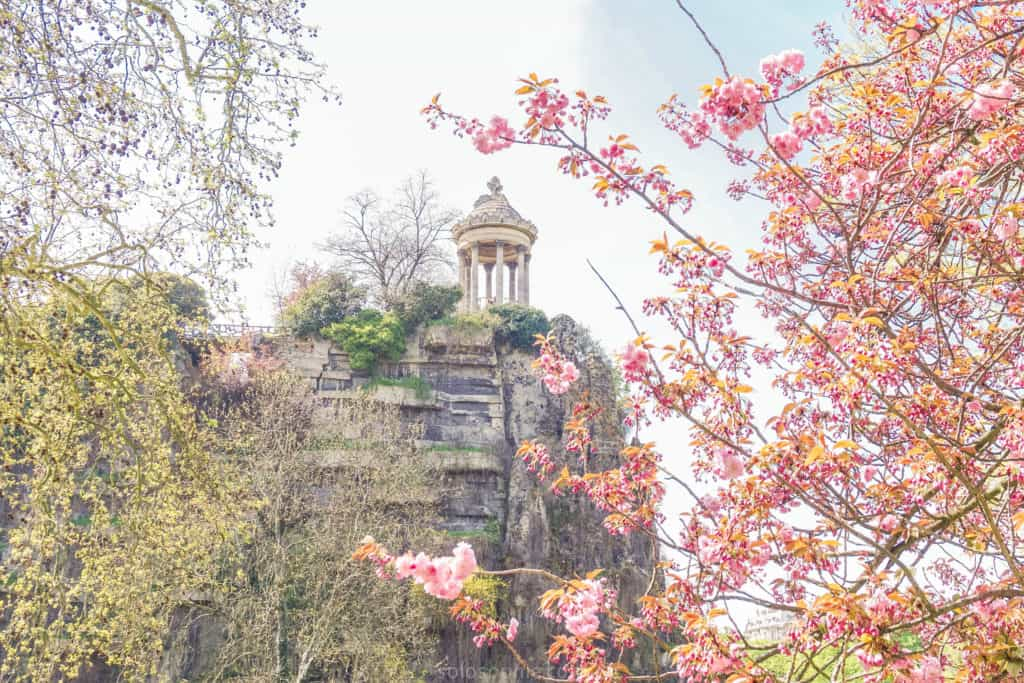 Parc des Buttes Chaumont, 19e arrondissement, Paris, France: cherry blossom