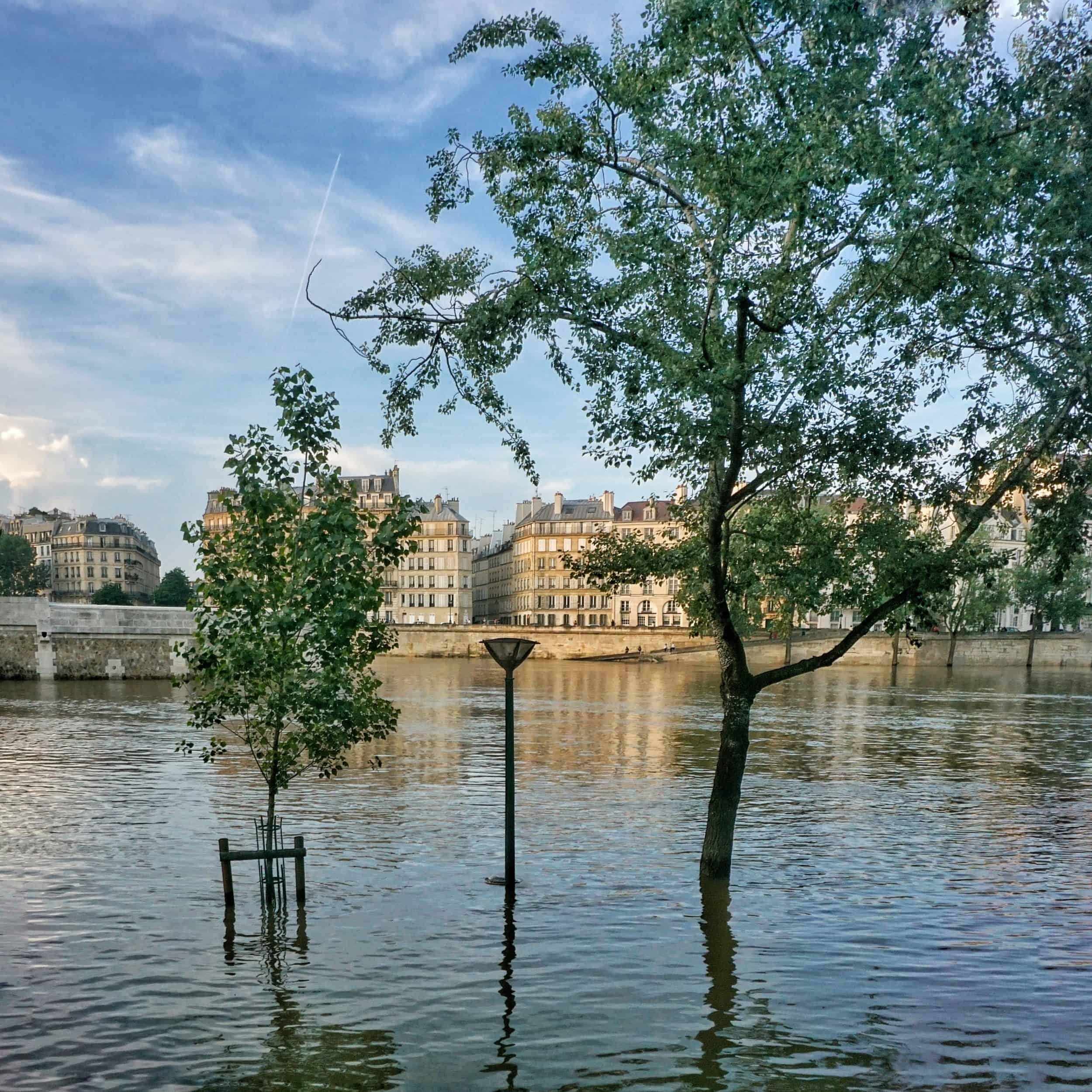 Flooding in Paris France: history, legend and photos: street lamp in the seine