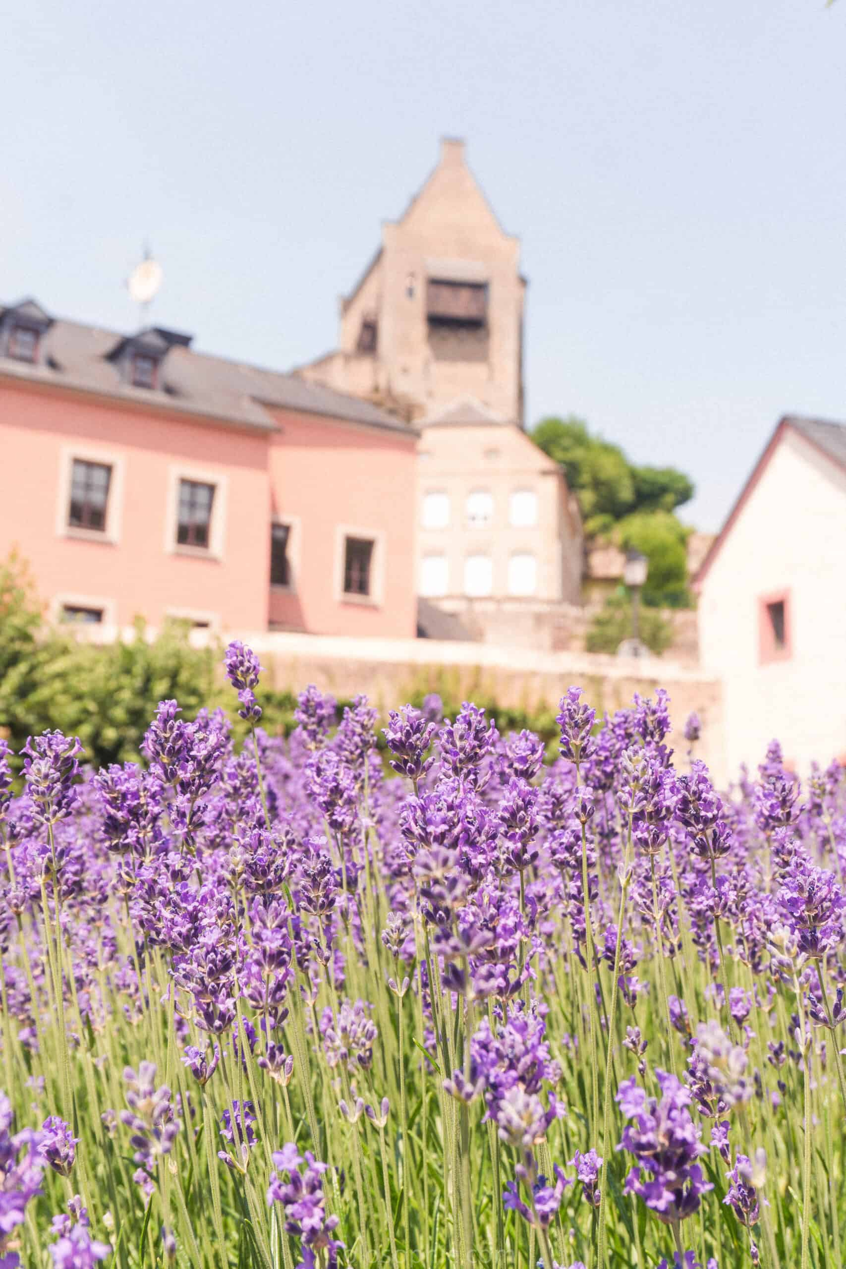 A quick guide to the best things to do in Larochette, a market town in Luxembourg, Europe