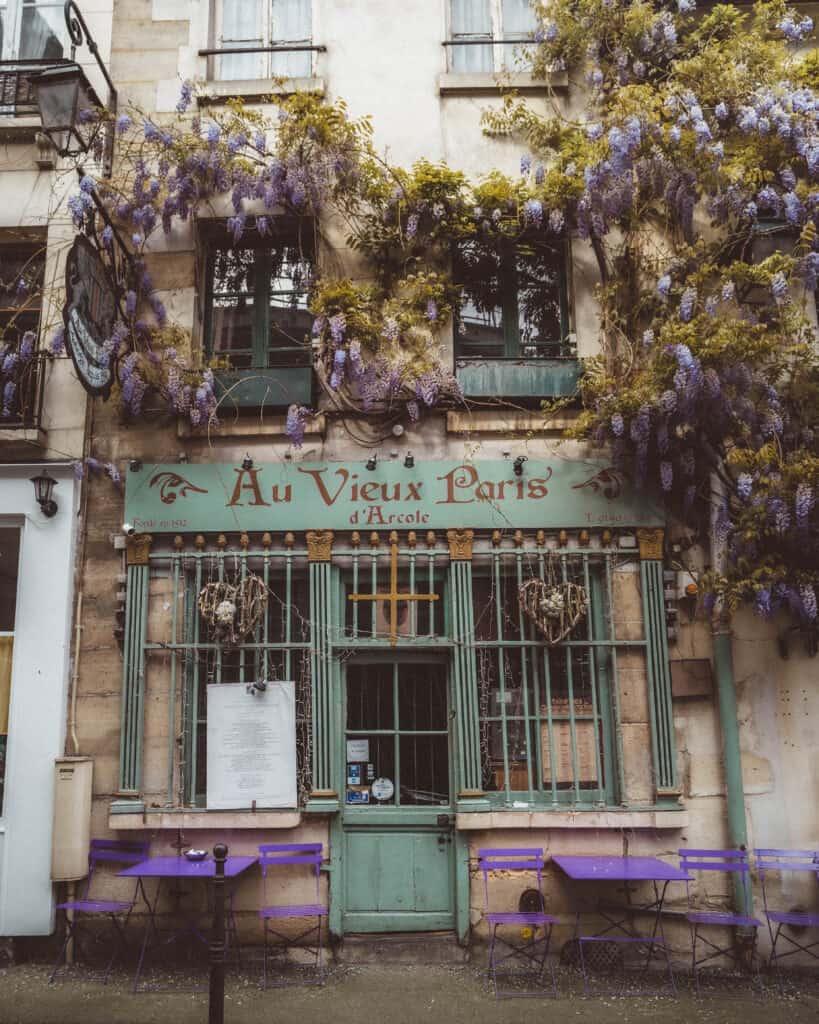 au vieux paris wisteria
