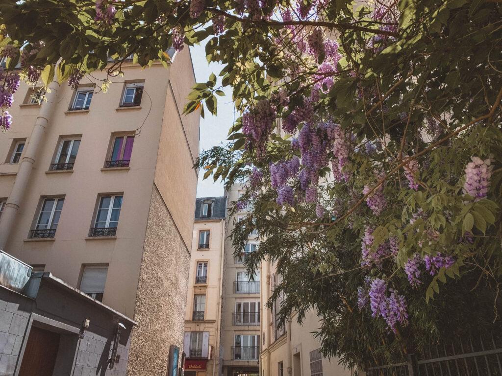 Rue du Moulin de la Vierge