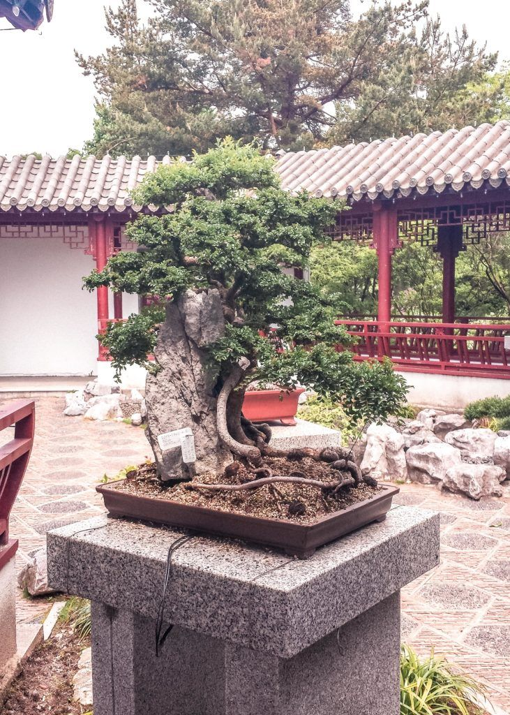 Japanese Gardens, Botanical Garden, Montreal