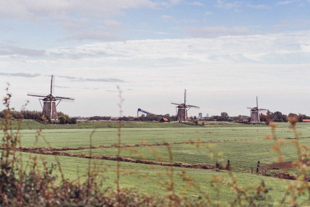 Molendriegang: Iconic Dutch Windmills Near the Hague, Holland, the Netherlands