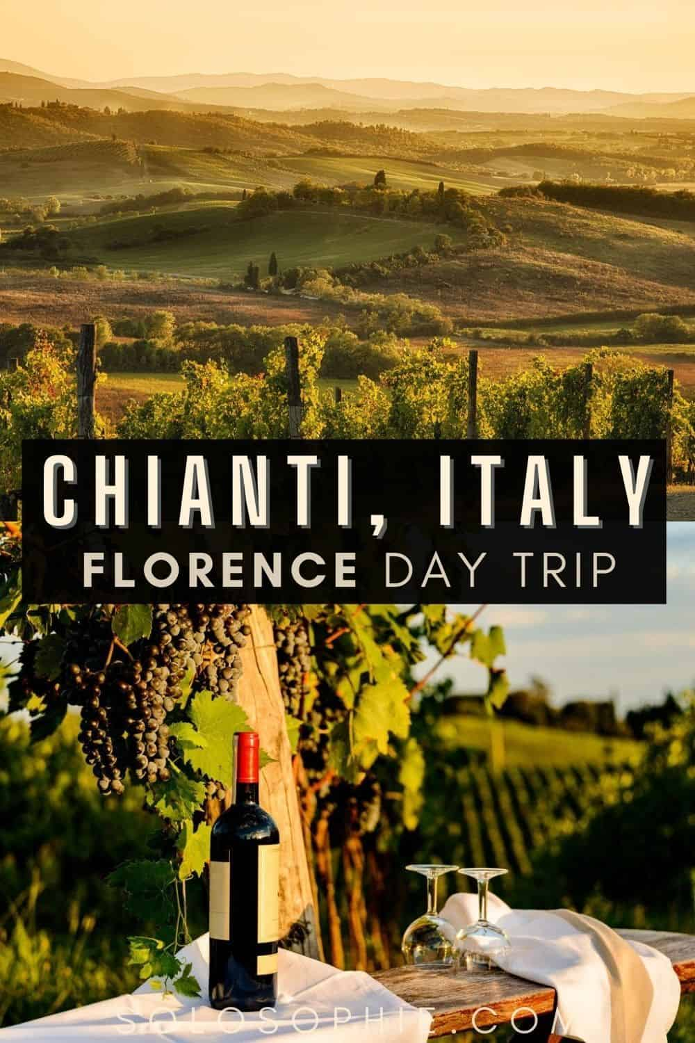 Chianti Italy wine tasting/ Florence to Chianti: A Tuscany Day Trip from Florence