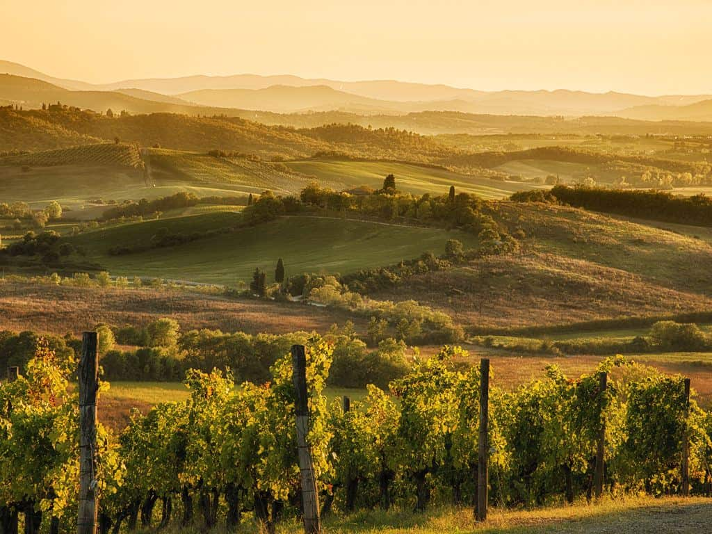 Florence to Chianti: A Tuscany Day Trip from Florence