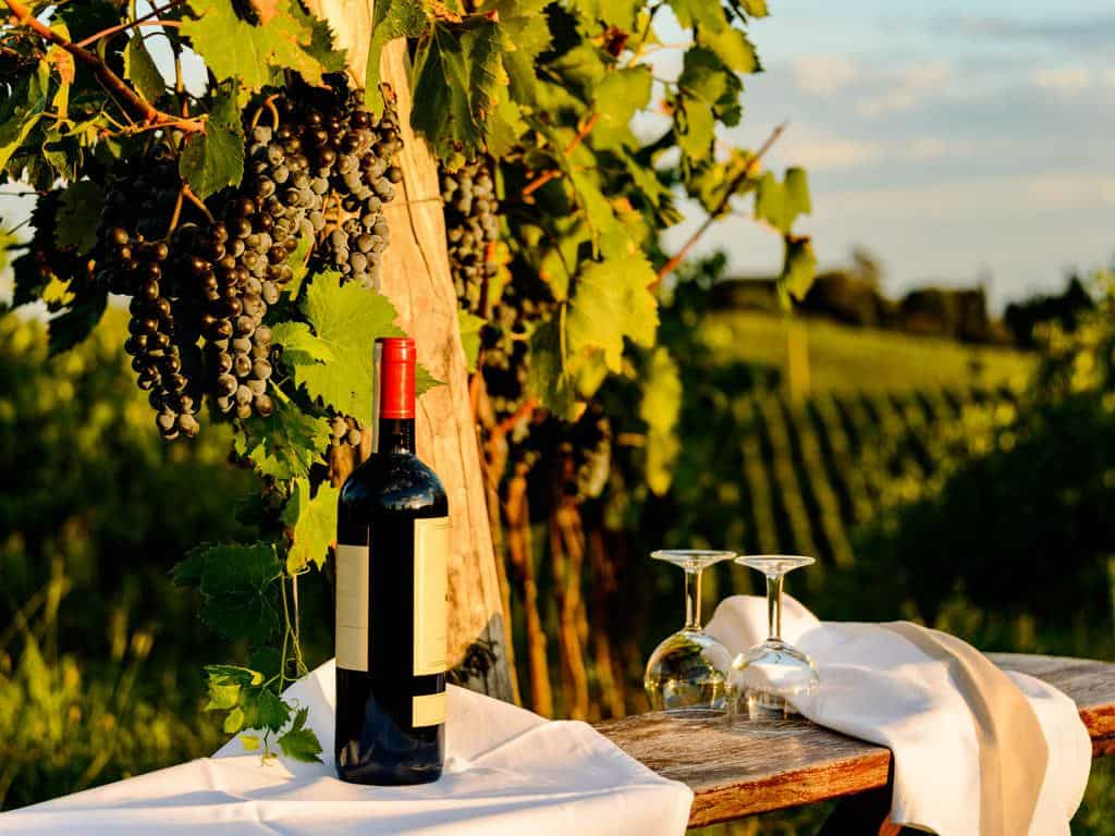 wine tasting in chianti Italy
