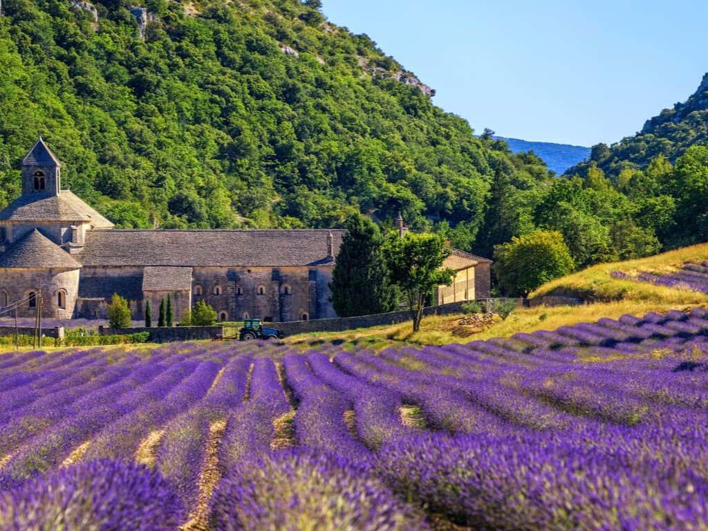 Senanque abbey, Gordes, Provence