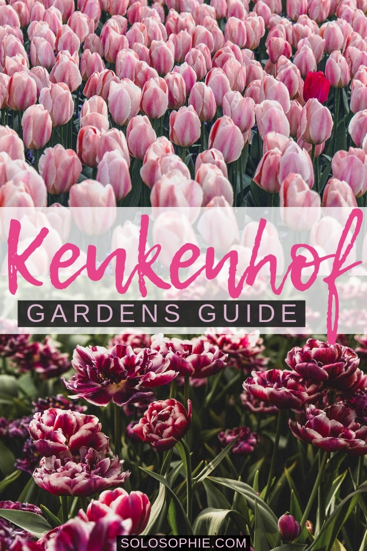 How to visit the Garden of Europe, aka the gardens at Keukenhof as a day trip from Leiden, Haarlem, Amsterdam, Rotterdam, or the Hague when in the Netherlands