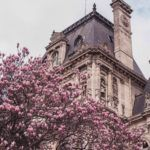 Looking for the best of the French capital in the mid-spring? Paris in April: Your go-to-guide on Where to Go & What to See