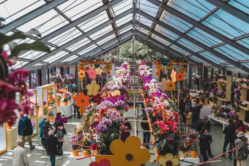 Beatrix Pavilion rooftop terrace, An Insider's Guide on How to Visit Keukenhof, the Garden of Europe in the Netherlands