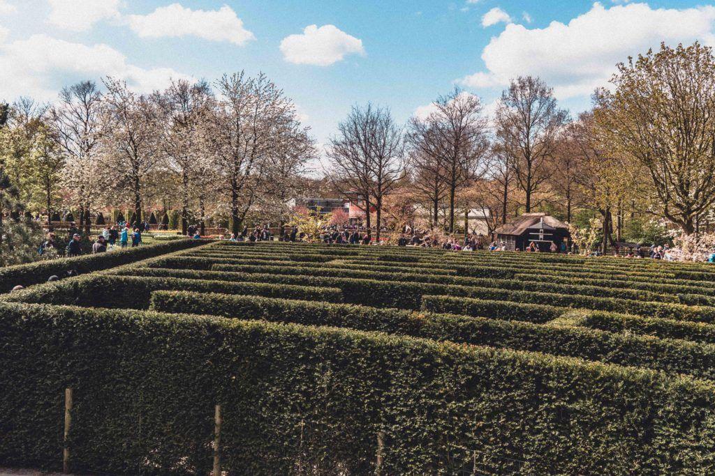 Keukenhof maze near Lisse as a day trip from Amsterdam