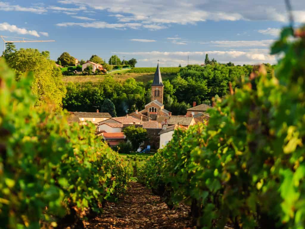 Saint Julien in region Beaujolais