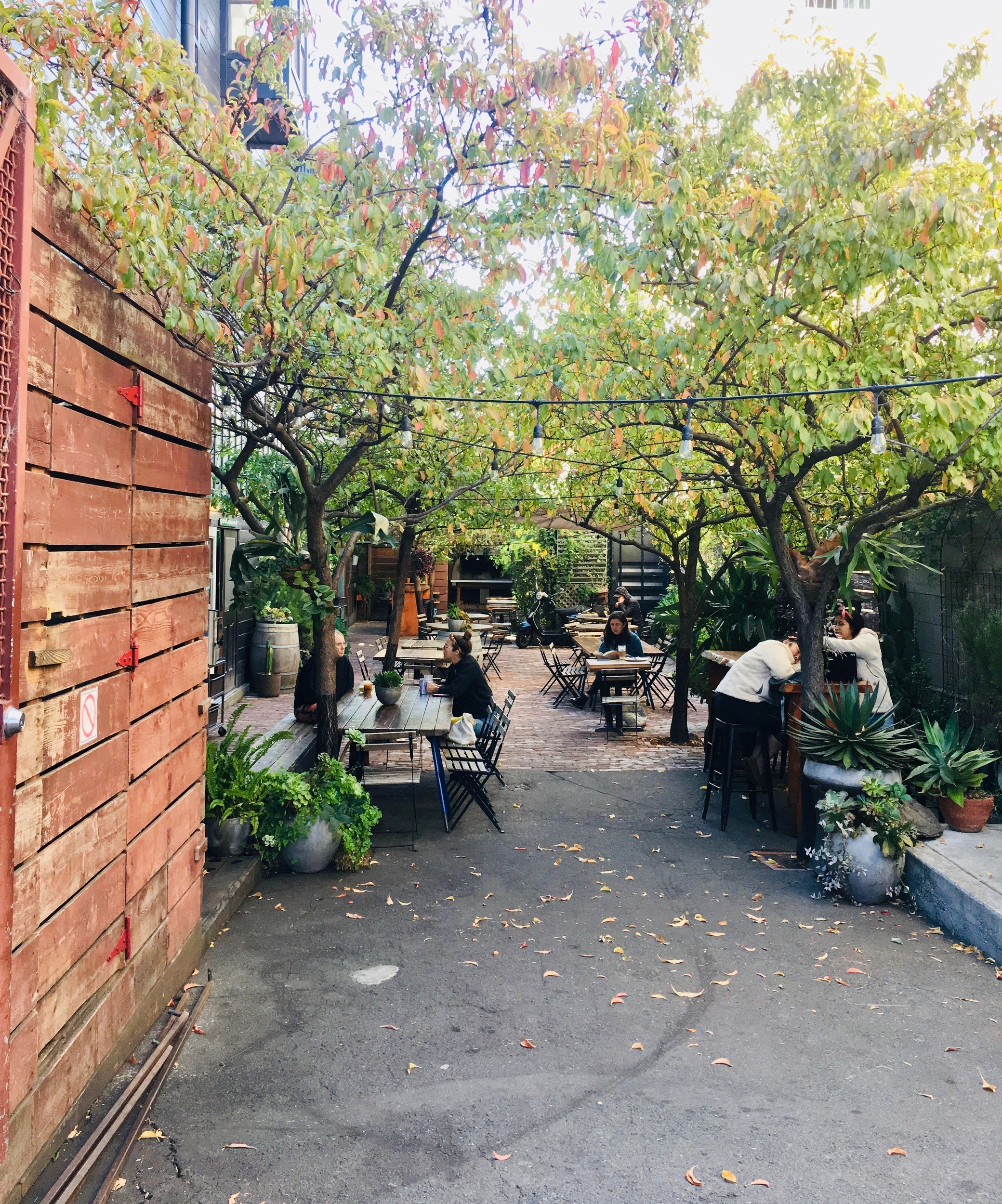 9 Cute Cafés in San Francisco You Must Visit on your next trip to California USA where to find the best coffee in San Francisco, CA