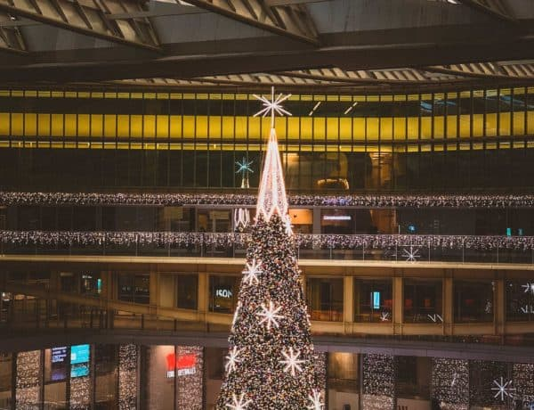 Beautiful Christmas Trees in Paris You'll Absolutely Love to visit in Paris France